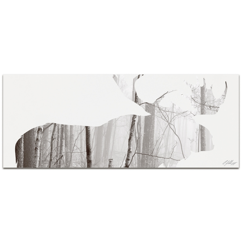 MOOSE LANDSCAPE - 48x19 in. Metal Animal Print