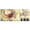 Coastal Decor 'Crab' - Beach Wall Art on Metal or Acrylic