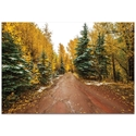 Landscape Photography 'Road Less Traveled' - Autumn Trees Art on Metal or Plexiglass - Image 2