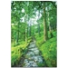 Landscape Photography 'Cobblestone Path' - Green Trees Art on Metal or Plexiglass