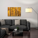 Landscape Photography 'Aspen Gold' - Autumn Nature Art on Metal or Plexiglass - Lifestyle View