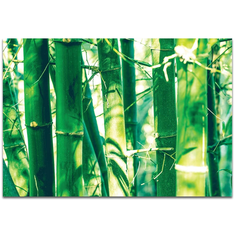 Asian Wall Art 'Bamboo Forest' - Bamboo Decor on Metal or Plexiglass