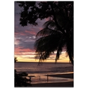 Coastal Wall Art 'Coastal Sunset Skies' - Beach Sunset Decor on Metal or Plexiglass