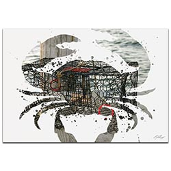 Crab Pot by Adam Schwoeppe Animal Silhouette on White Metal
