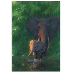 Elephant Wall Art Carefree Calf - African Wildlife Decor on Metal or Acrylic