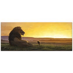 Expressionist Wall Art Lion in the Sun - Wildlife Decor on Metal or Plexiglass