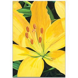 Traditional Wall Art Heart of a Yellow Lily - Floral Decor on Metal or Plexiglass
