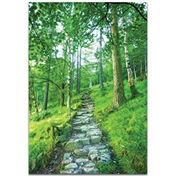 Landscape Photography Cobblestone Path - Green Trees Art on Metal or Plexiglass