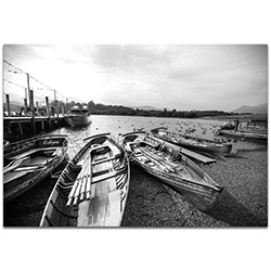 Black & White Photography Row of Rowers - Coastal Art on Metal or Plexiglass