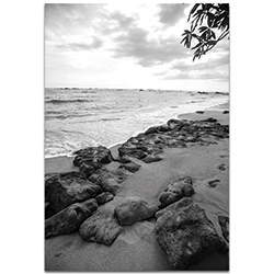 Black & White Photography The Coastline - Coastal Art on Metal or Plexiglass