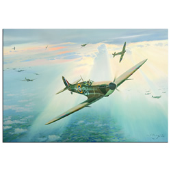 Spitfire - World War 2 Metal Wall Art