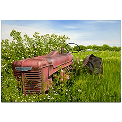 Americana Wall Art A Blanket of Roses - Classic Tractor Decor on Metal or Plexiglass