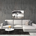 Under the African Sun by Piet Flour - Giraffe Wall Art on Metal or Acrylic - Alternate View 3