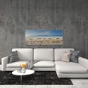 Zebra Promenade by Piet Flour - Zebra Wall Art on Metal or Acrylic - Alternate View 3