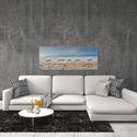 Zebra Promenade by Piet Flour - Zebra Wall Art on Metal or Acrylic - Alternate View 1