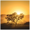 Golden Sunrise by Piet Flour - Landscape Photography on Metal or Acrylic - Alternate View 2