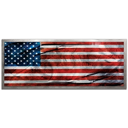 Amber LaRosa American Glory Framed 48in x 19in Patriotic American Flag Art on Colored Metal