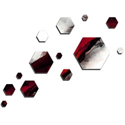NAY Carbon Red 66in x 50in Hexagons Abstract Art on Aluminum Composite