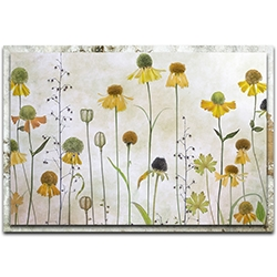 Mandy Disher Helenium 32in x 22in Modern Farmhouse Floral on Metal
