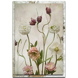 Sharon Williams Spring Garden 22in x 32in Modern Farmhouse Floral on Metal