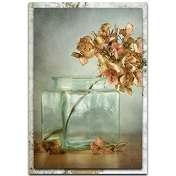 Mandy Disher Hydrangea 22in x 32in Modern Farmhouse Floral on Metal